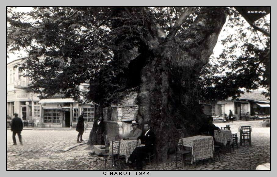 3 Охридскиот Чинар 1944 год