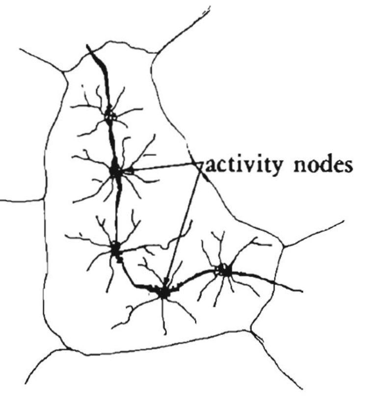 activity-nodes